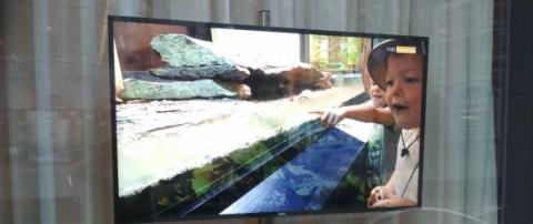 Ecran d'affichage en vitrine de l'Office du Tourisme de Tournai - Expansion TV