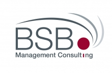 BSB MANAGEMENT CONSULTING SA